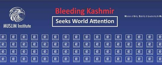 Seminar on Bleeding Kashmir Seeks World Attention